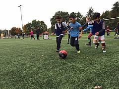 1. FC Nino: Grundschulen können sich bewerben